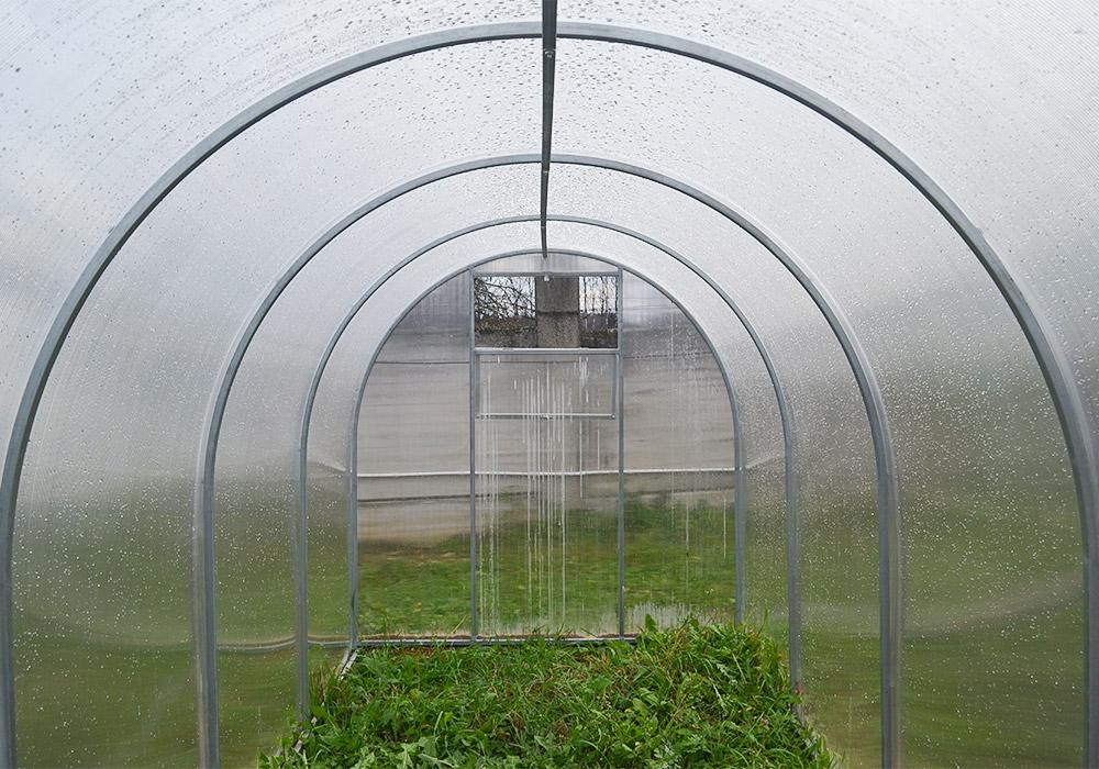 купить теплицу из поликарбоната в беларуси садовод